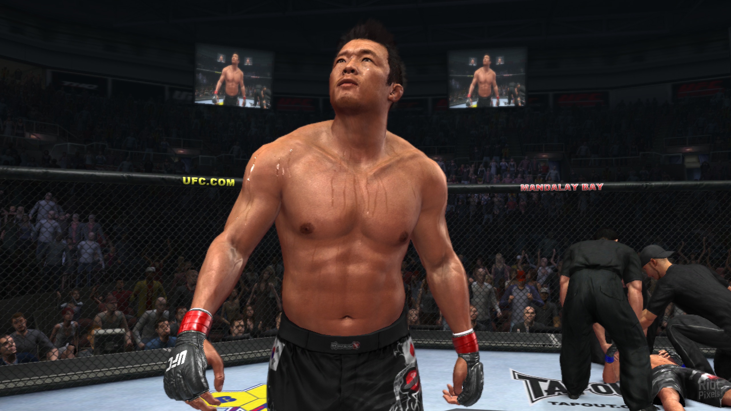 Ufc Undisputed 2011 Pc Game Free